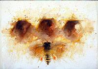 Yaşam Kaynağı Arılar