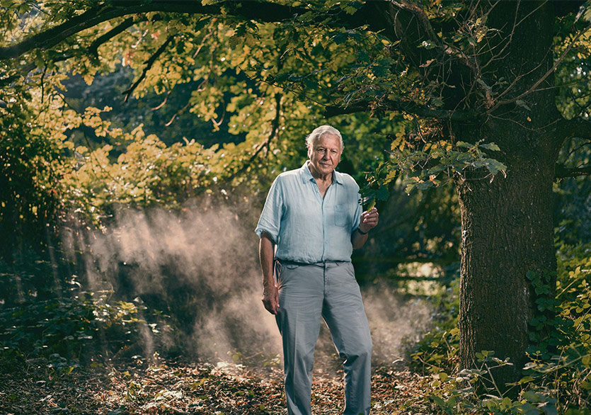Sir David Attenborough'tan Bir Yok Oluş Hikâyesi