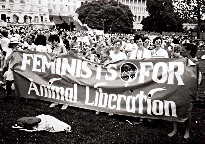 Feminizm ve Hayvanların Savunulması
