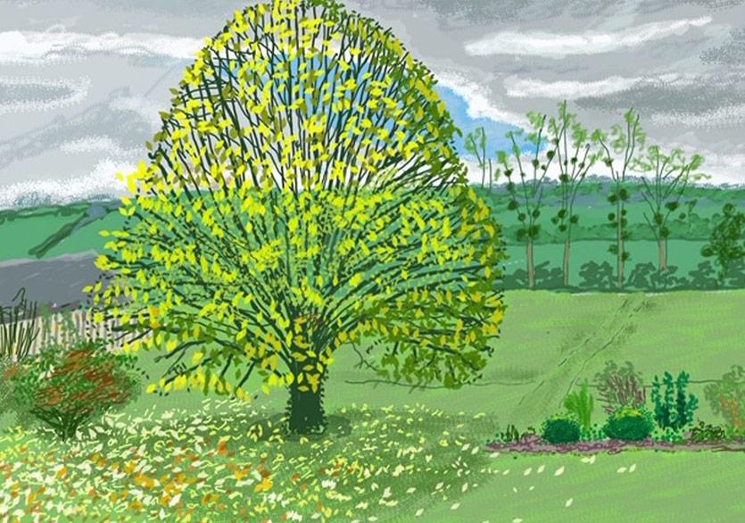 David Hockney'den İzolasyonda Umut Çizimleri