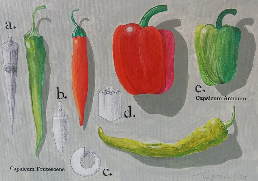 Genetiği Değiştirilmiş Gıdalar ile Alışılmadık Bir Deneyim