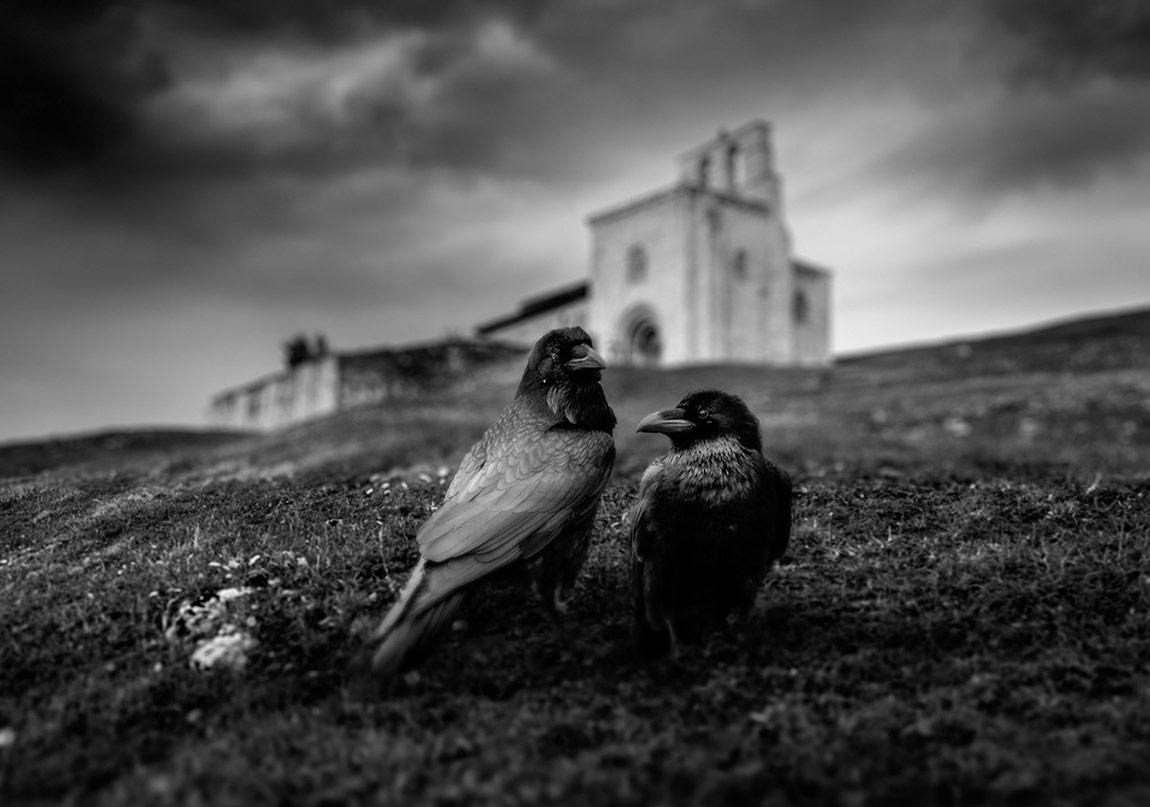 Gotik Düşler, Dehşetengiz Öyküler