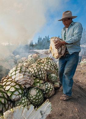 Ölümsüz Tanrıların Meksikalı Fotoğrafçısı