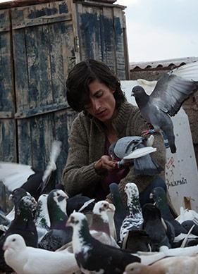 37. İstanbul Film Festivali'nin Öne Çıkan 16 Filmi