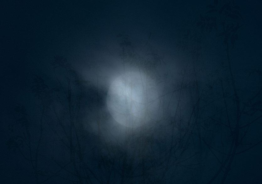 """Cahide Birgül'ün """"Geceye Uyananlar""""ı Yeniden"""