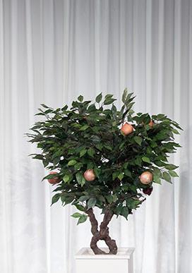 Kim Korkar Çağdaş Sanattan? Peki ya Soğan Ağacından?