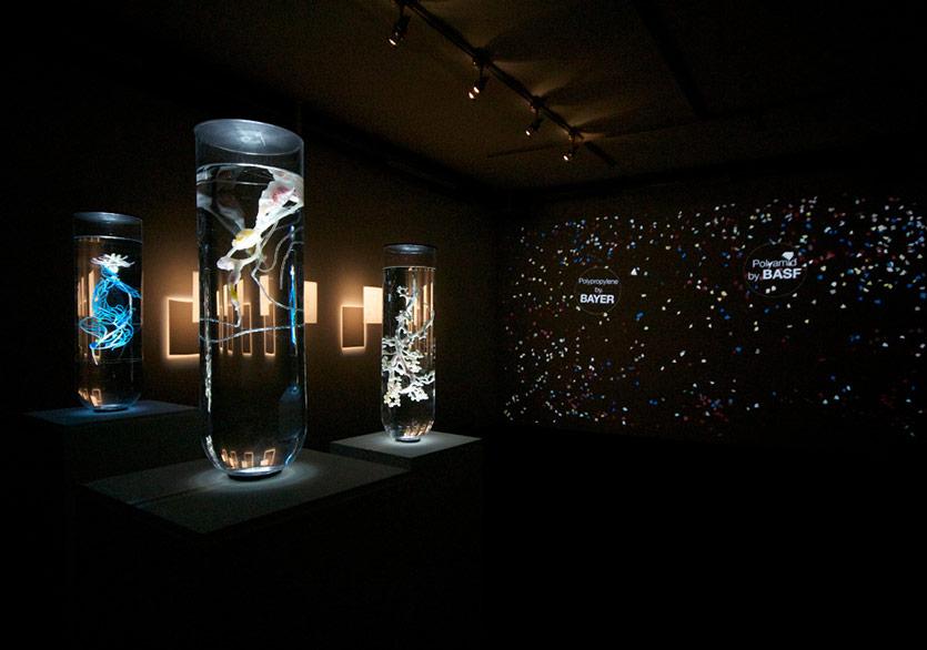 Pınar Yoldaş'ın Biyoloji ve Sanatı Birleştiren Sergisi