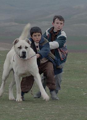 Türk Filmleri New Yorklularla Buluşuyor