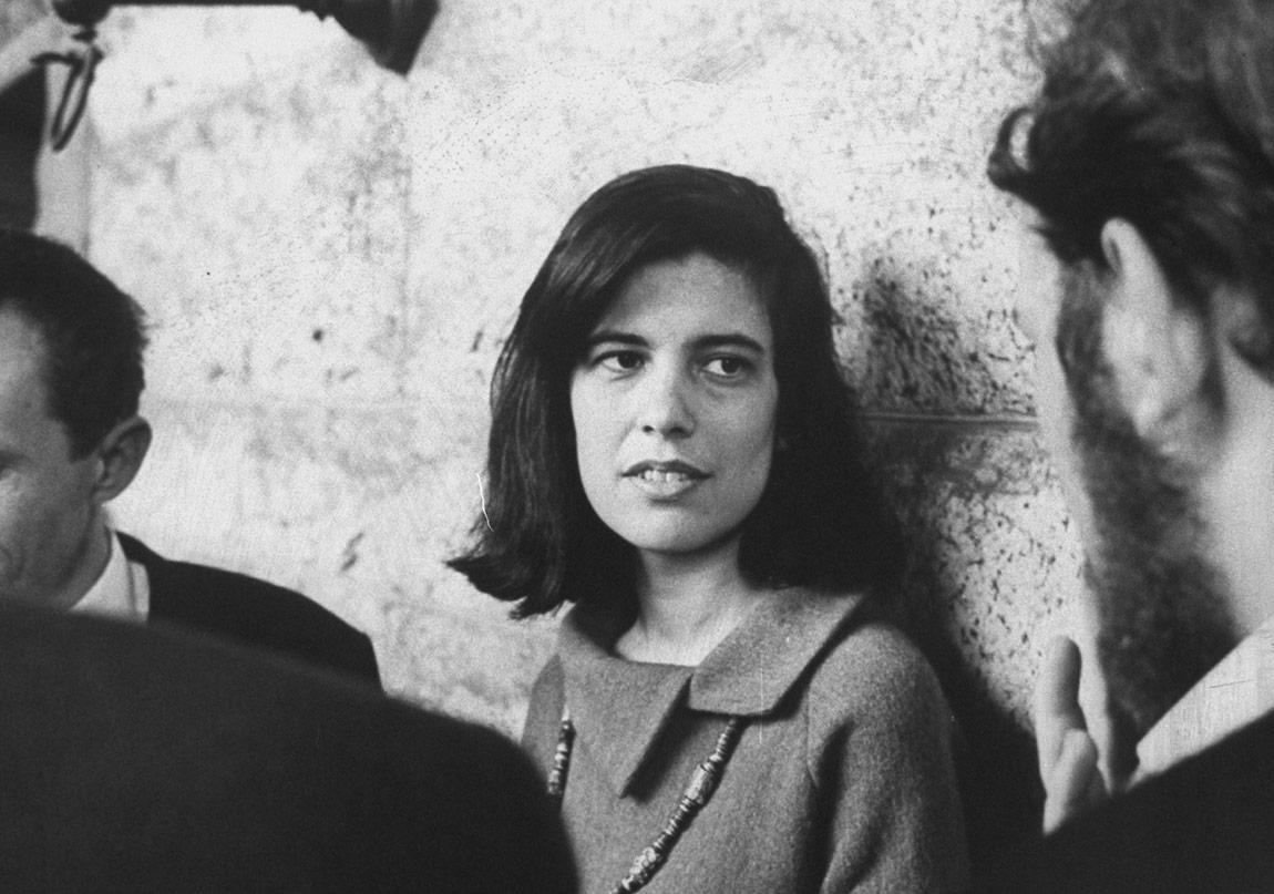 Susan Sontag, Entelektüel Bir Roman