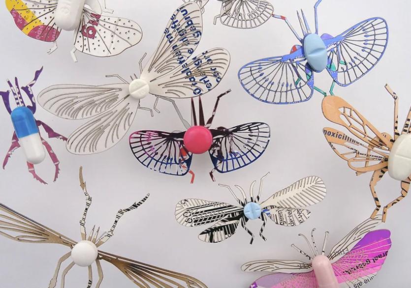 Merel Slootheer'dan Kâğıt Böcekler
