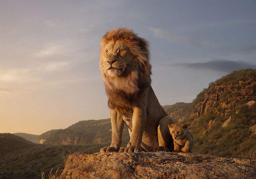 Aslan Kral 19 Temmuzda Sinemalarda!