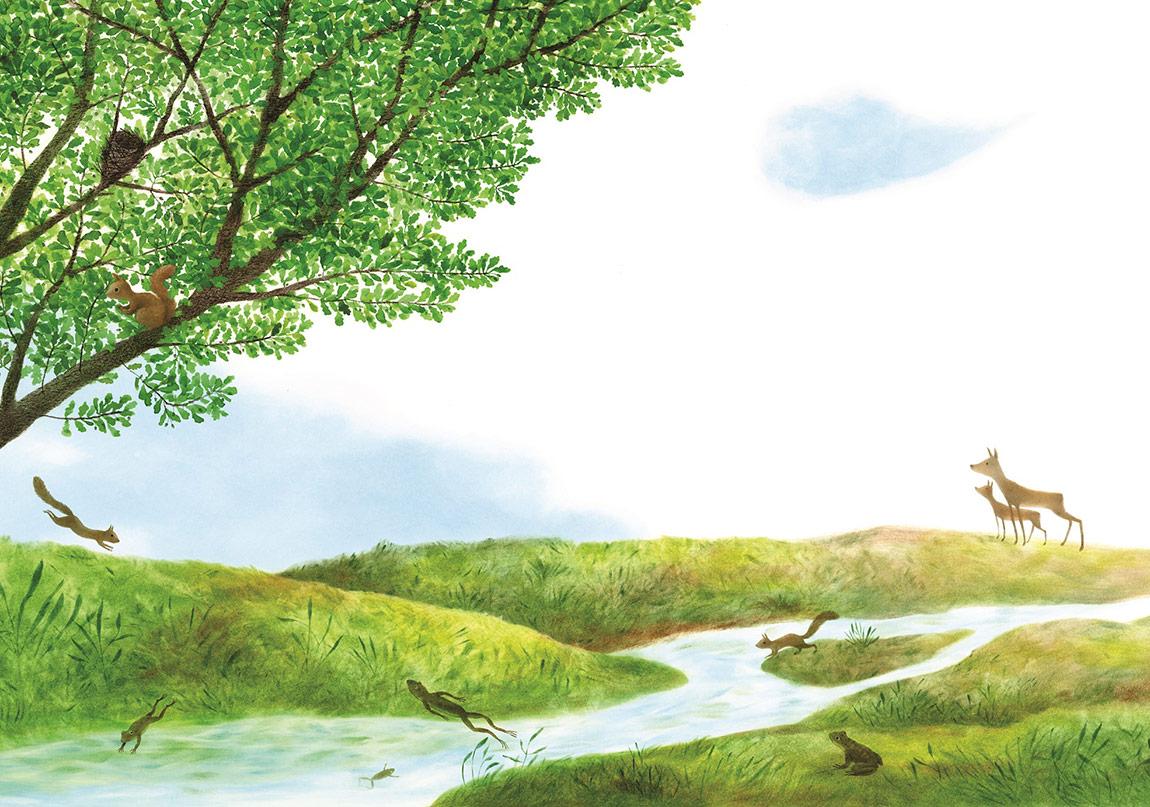 Şehrin Ortasında Bir Doğa Öyküsü