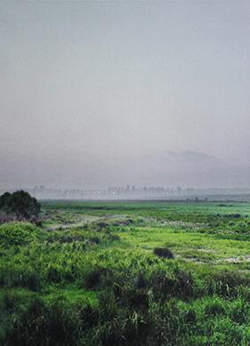 Ekolojik Sanata Göz Kırpan Bir Sergi
