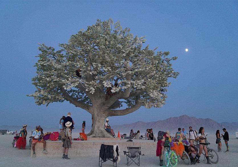 Burning Man Katılımcılarına Işık Desenleriyle Cevap
