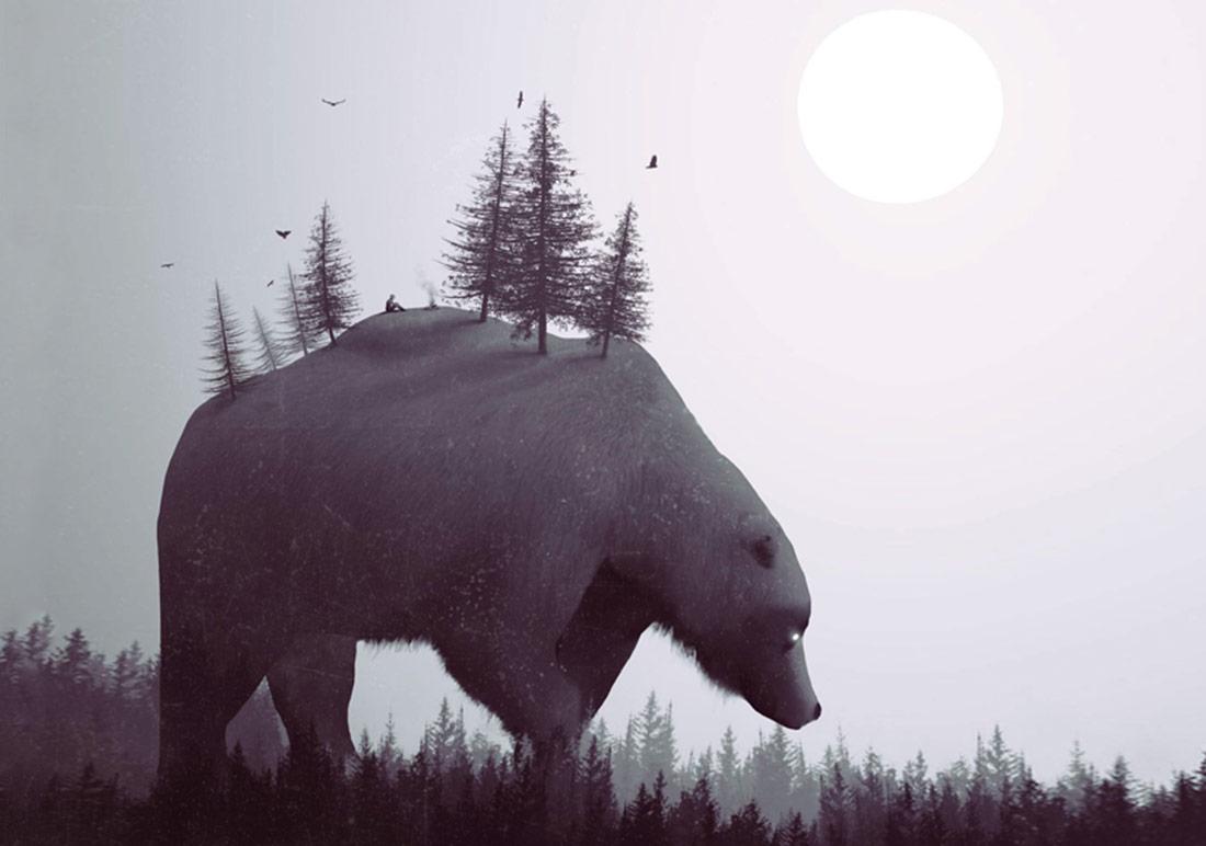 Hayvanların Gözünden Dünyaya Bakmak