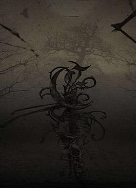 Empyrium, Müzik Tarzından Çok Duygu ve Atmosfer