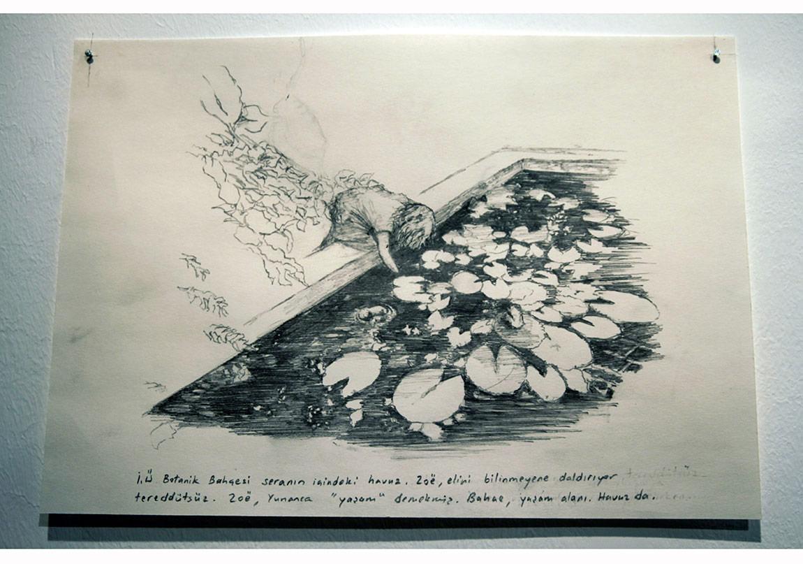 """Zoe"", İ.Ü. Botanik, 2013, Çizim, Kayıp Sergisi-Daire Sanat."