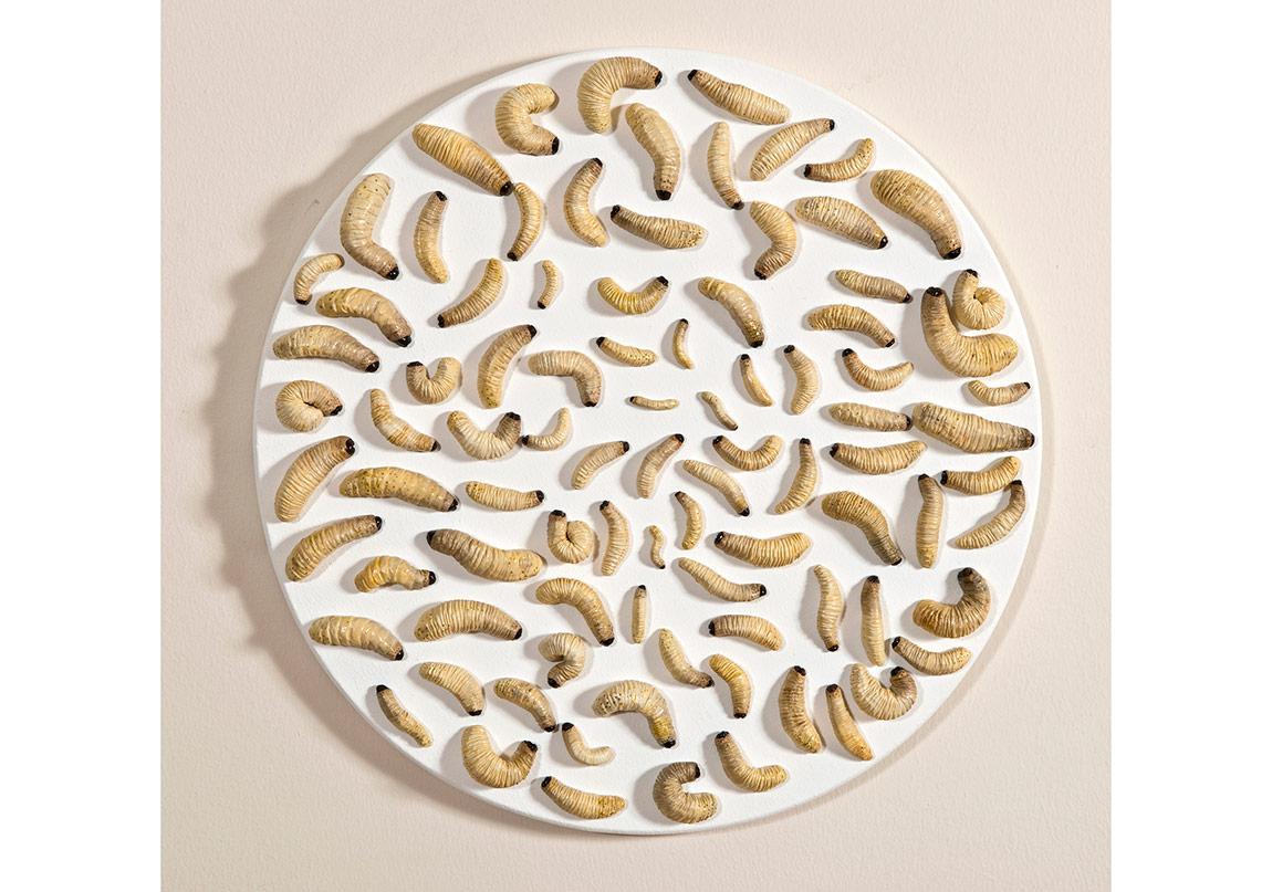 """""""Tüketmek üretmektir"""",Modelaj hamuru üzerine yağlıboya,Ø 43 cm, 2016"""