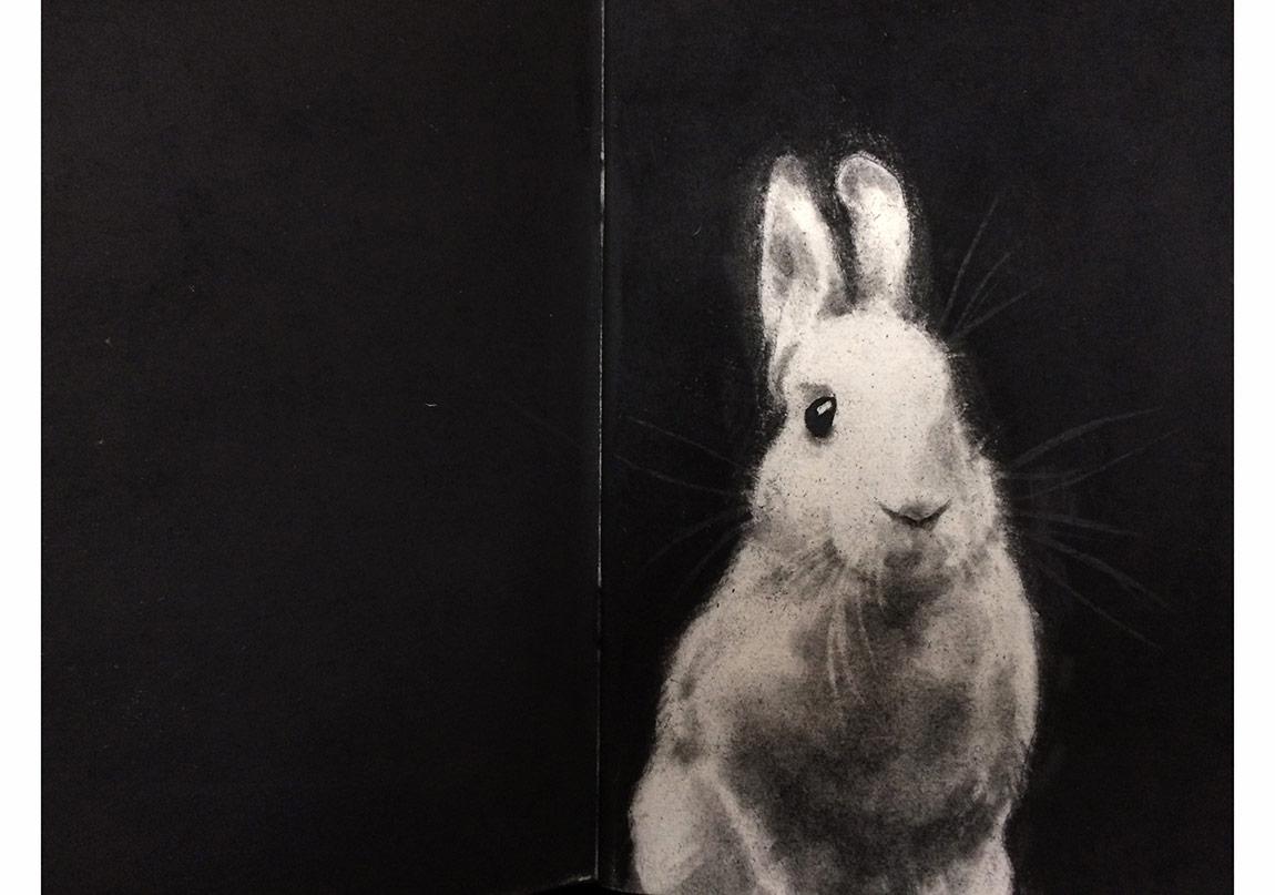 Gizem Akkoyunoğlu, İsimsiz x Kağıt üzerine füzen, 21 x 29 cm