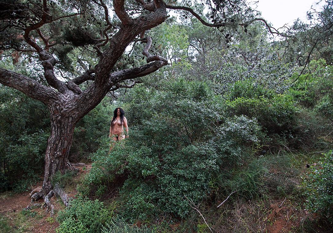 'Uzak Orman Yakın Şehir' serisi / 'Faraway Forest Near City' series, 2015 Fotoğraf / Photograph96 x 131 cmSanatçı'nın ve Rampa'nın izniyle / Courtesy the artist and Rampa