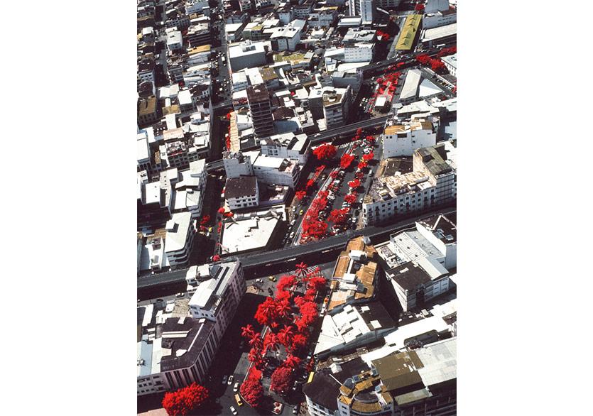 Vicente Muñoz Şehirleşme ve Doğal Hayatı Gözler Önüne Seriyor