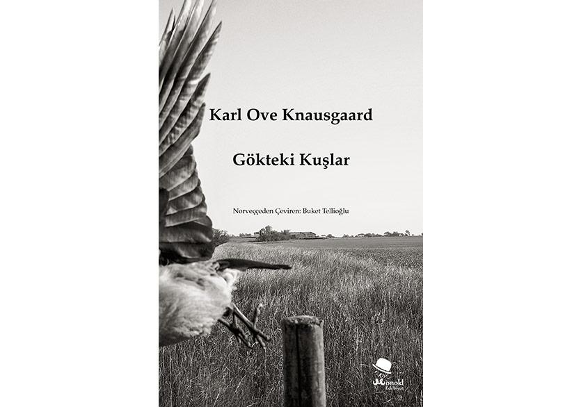 Knausgaard'dan Kuşlar ve Gökler Üzerine