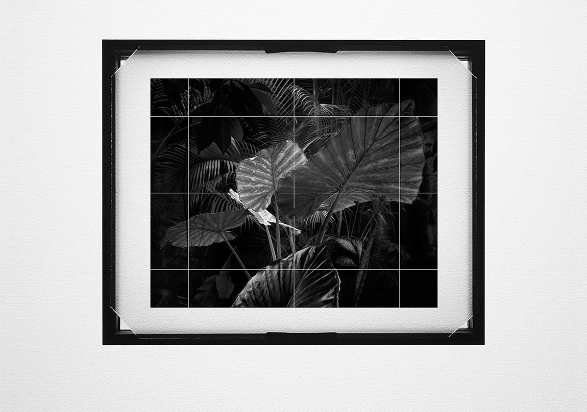 Ahmet ElhanBuzlu Cam #001, 2015Pigment mürekkep baskı,42x46 cmUnique