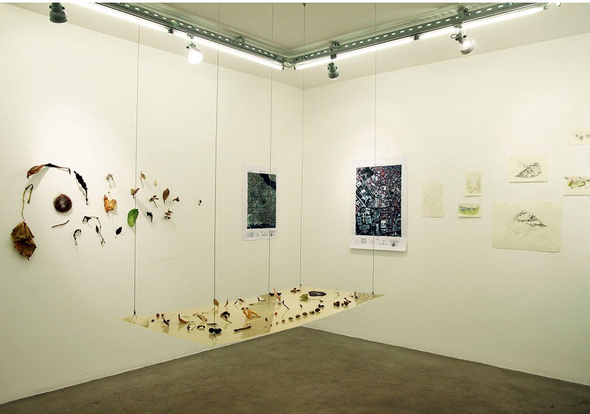 """""""İ.Ü. Botanik"""", 2013, Yerleştirme, Kayıp Sergisi-Daire Sanat."""