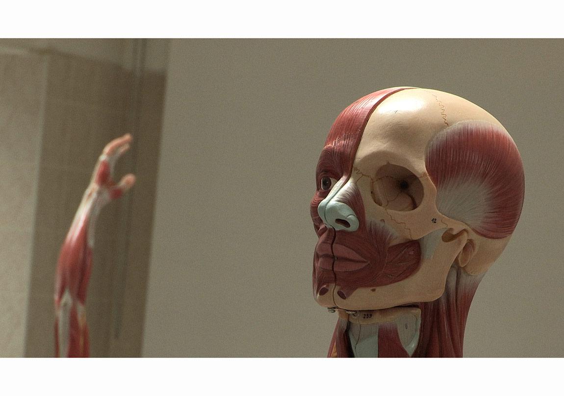Ali Kazma - Anatomy