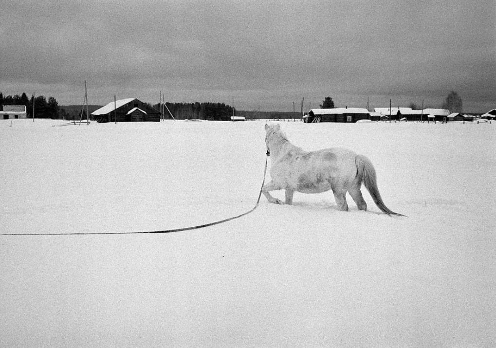 Fotoğraf:Emil Gataullin