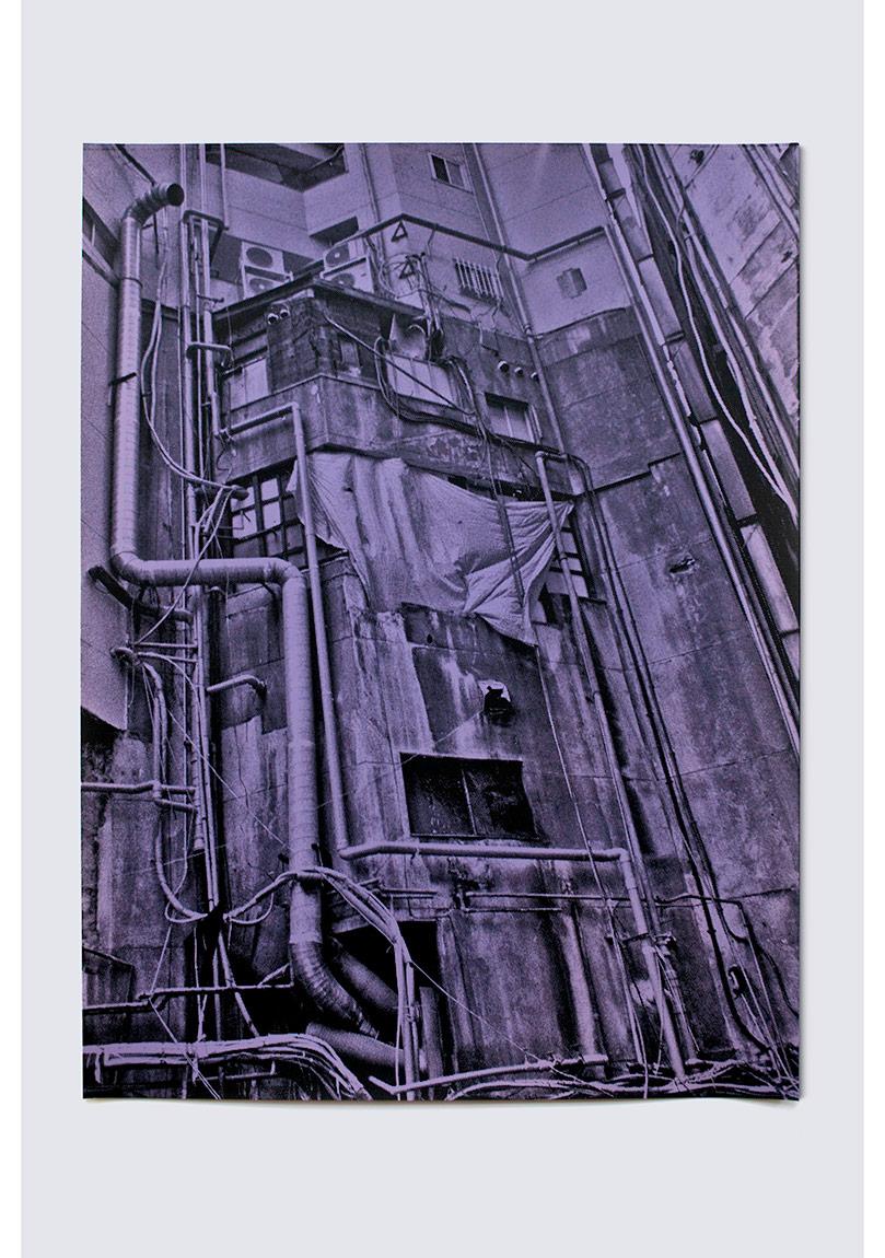 "Ata Kam, ""Nabız"" (2012), Pozlanmış fotoğraf kağıdına serigrafi baskı, 30x40 cm, 2014"