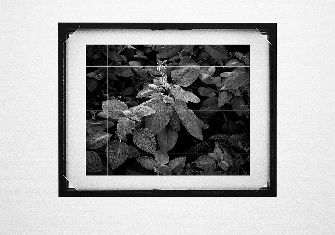 Ahmet ElhanBuzlu Cam #003, 2015Pigment mürekkep baskı,42x46 cmUnique