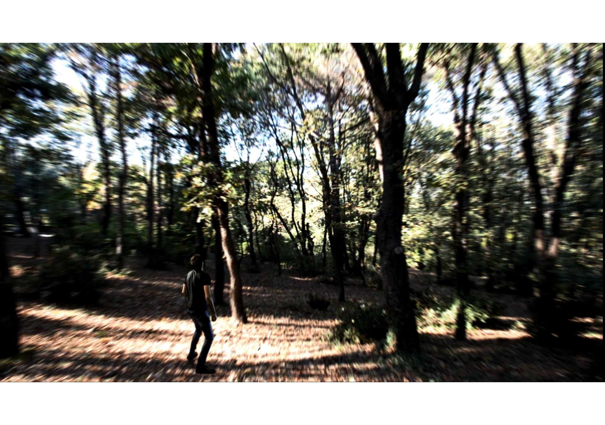 mış gibi hissetmek, video, 2014
