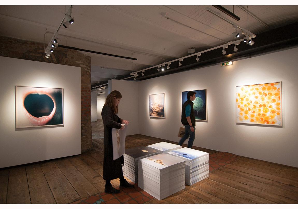 'Illuminance' sergisinden genel görünüm © Kunst Haus Wien, 2015 Fotoğraf: Antonia Mayer
