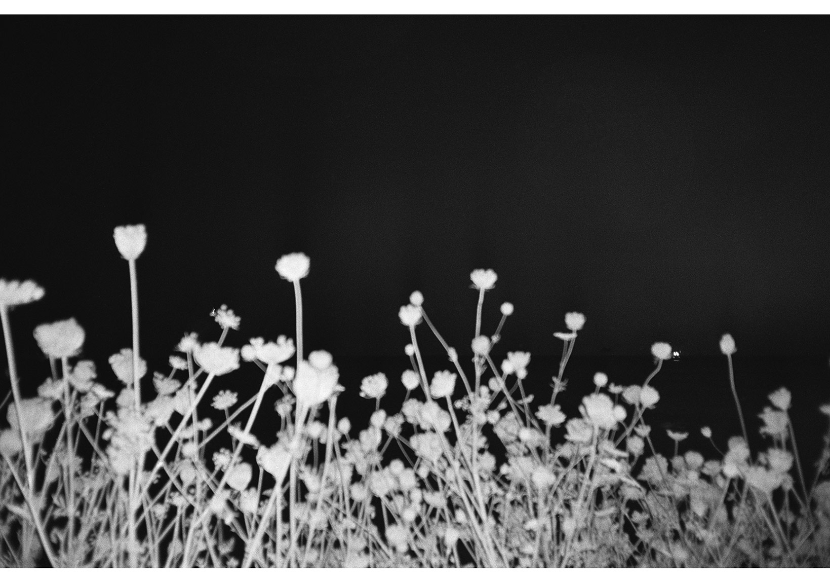 © İrem Sözen, 'geri bak / turnaround' serisinden