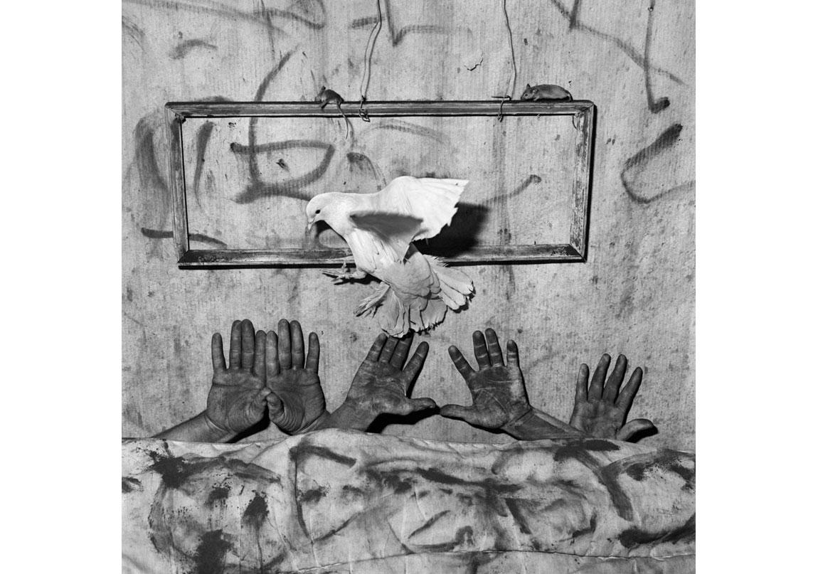 Five hands, 2006, Arşivsel pigment baskı, 90x90 cm, Ed.10 © Roger Ballen, Galerie Karsten Greve Köln, Paris, St Moritz izniyle