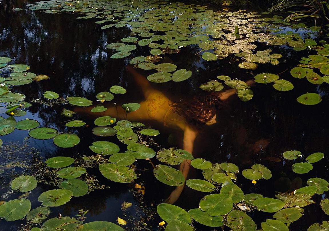 Ellen Kooi, Schoten ñ waterlelies, 2014 , Fuji christal archive print, diasec, dibond, 110 x 163 cm