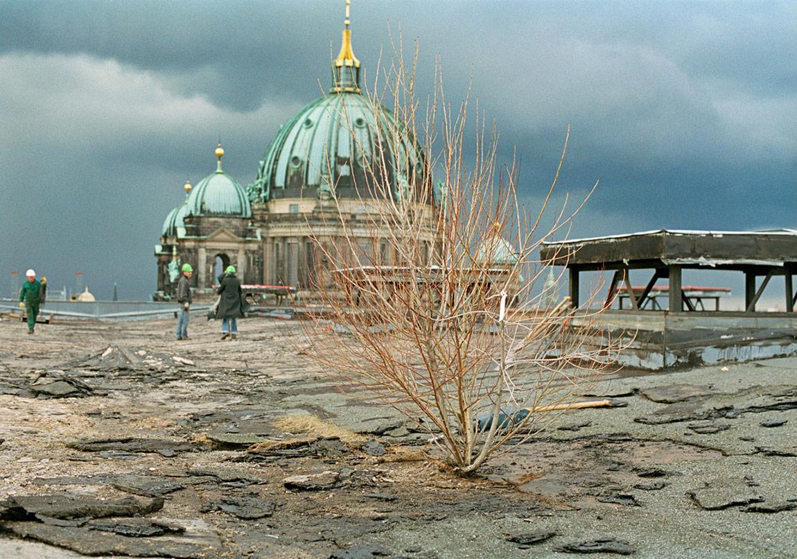 """Aktion Restgrün"""", 2006, Copyright Ulrike Mohr / VG Bild-Kunst,Fotografr: Petra Spielhagen"""