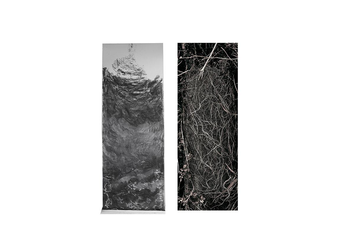 """Didem Erbaş & Eren Sulamacı """" Başarı Ödülü"""" """"Tortu"""", 2016Yerleştirme, Kağıt üzerine füzen, C-print"""