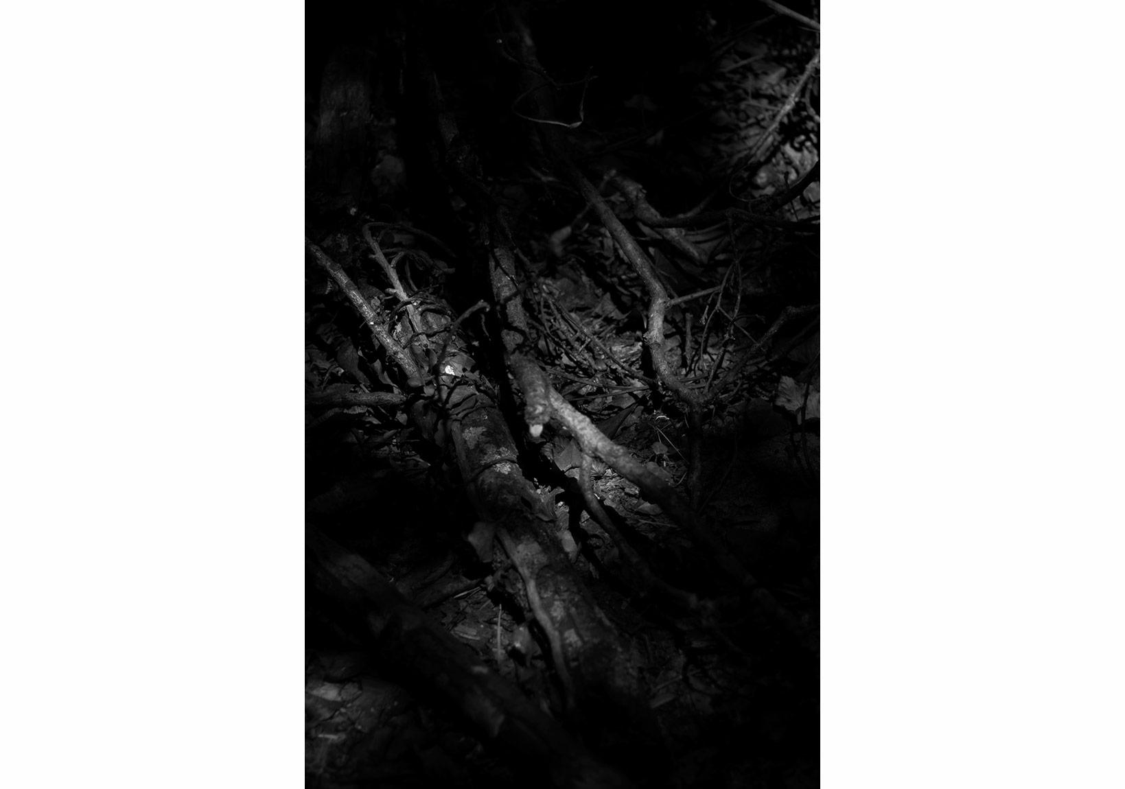 Aslı Narin, Rüzgarı Düşün/Think of the Wind(1), 2015, Diasec baskı/print, 40x27cm