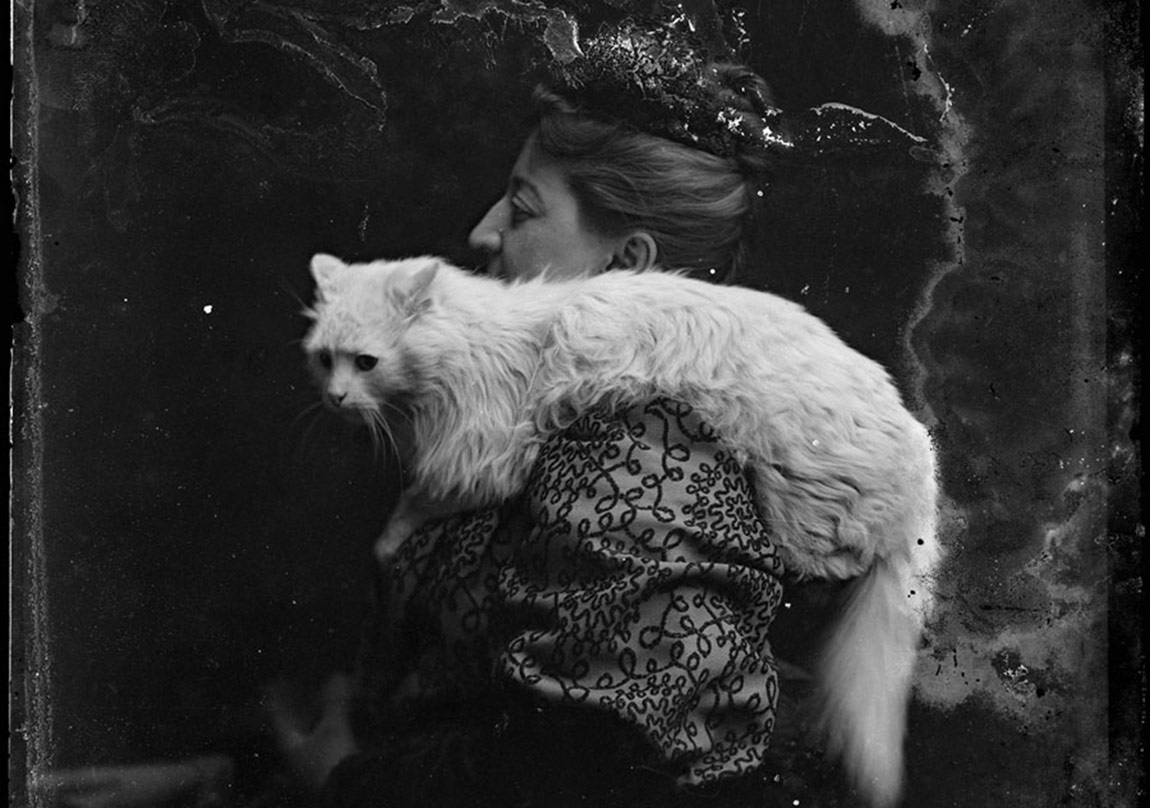 A woman photographed with her cat at the C. M. Bell Studio in Washington, D.C., sometime between 1894 and 1901