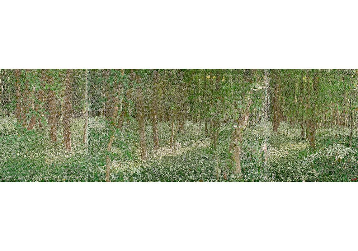 Azade Köker, Sessizliğin Manzarasi, 2010Tuval Üzerine Karisik Teknik, 174x548 cm(Istanbul Modern Sanat Muzesi Koleksiyonu)
