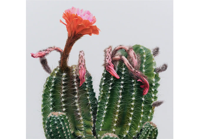 Kwang-Ho Lee, Cactus No.98