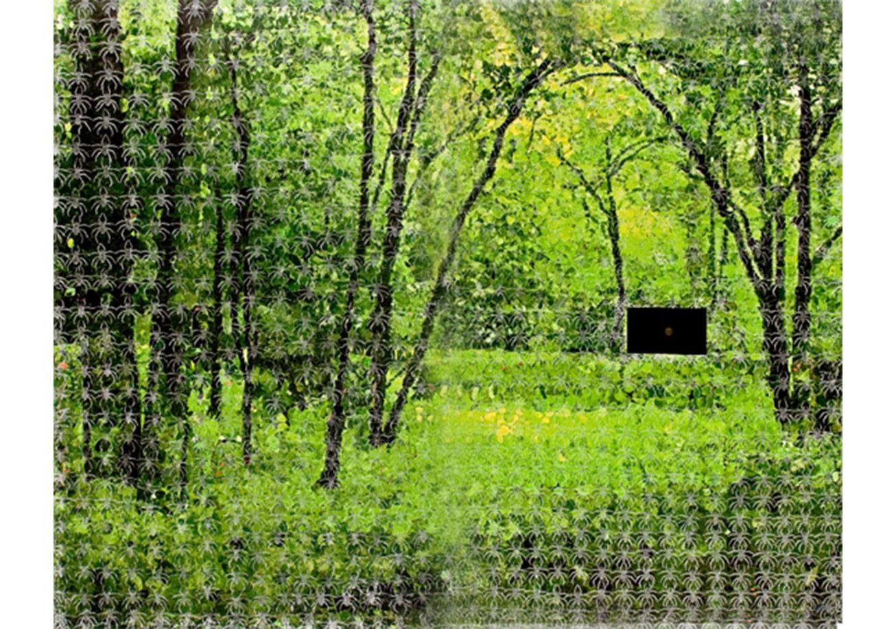Azade Köker, Sessizliğin Manzarasi, 2010Video Yerlestirme ile Karisik Teknik, 270x348cm(Proje 4L / Elgiz Cagdas Sanat Muzesi Koleksiyonu)