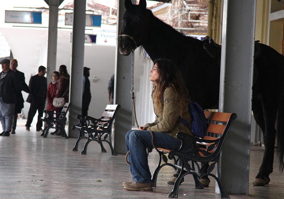 Kara At Hatıraları(Black Horse Memories)