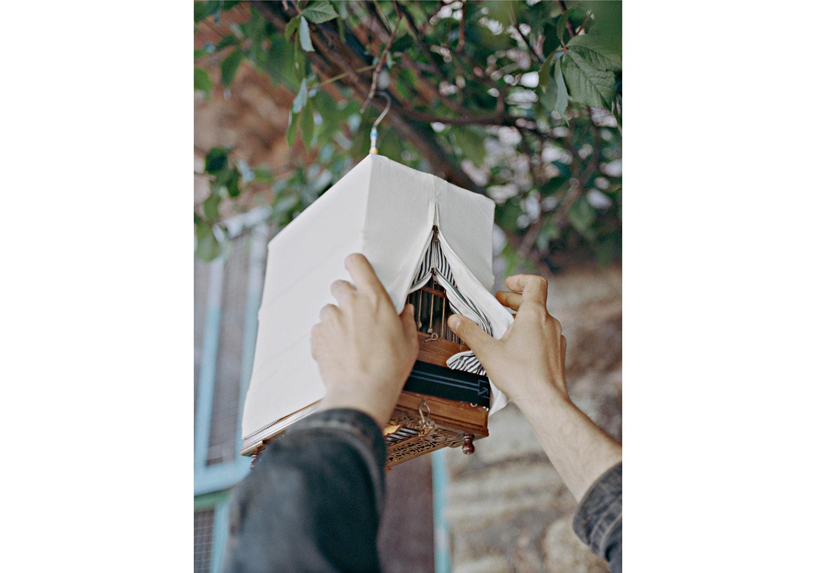 Cemre Yeşil&Maria Sturm, 'Kuşların Hatrına' serisinden