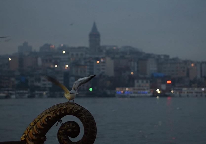 40. İstanbul Film Festivali Ulusal Belgesel Yarışması ve Ulusal Kısa Film Yarışması Çevrim İçi Gösterimleri Başlıyor