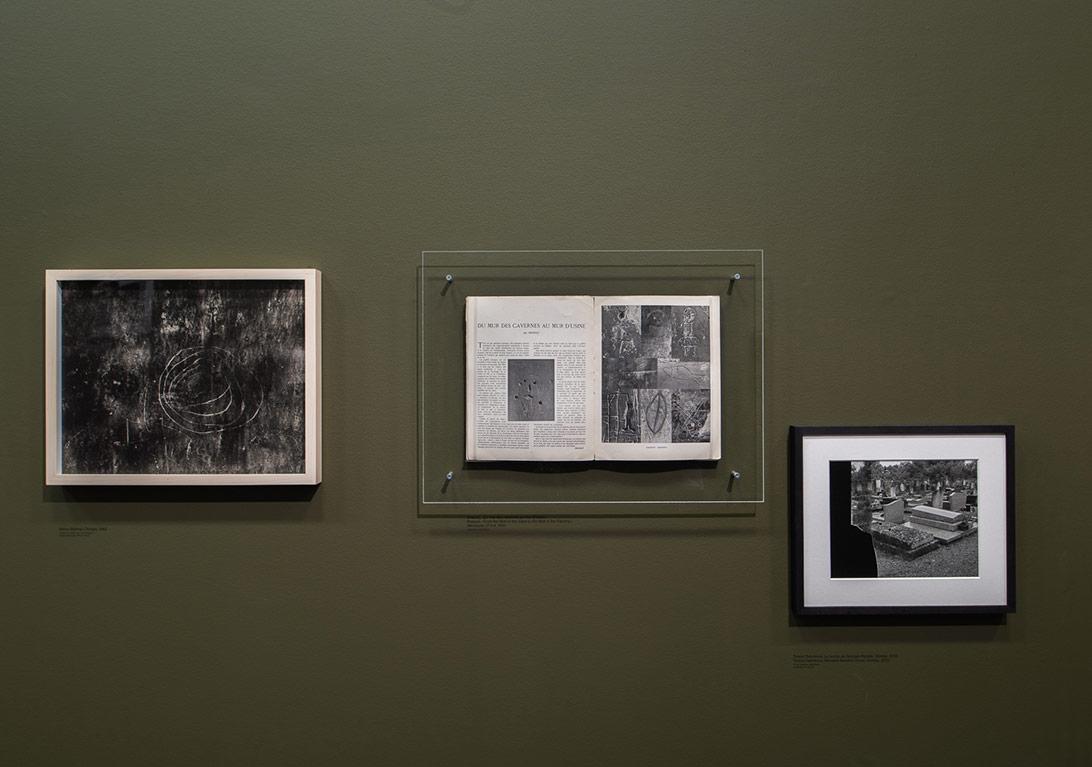 'A Handful of Dust' sergisinden genel görünüm [Fotoğraf: © Martin Argyroglo/Le Bal]