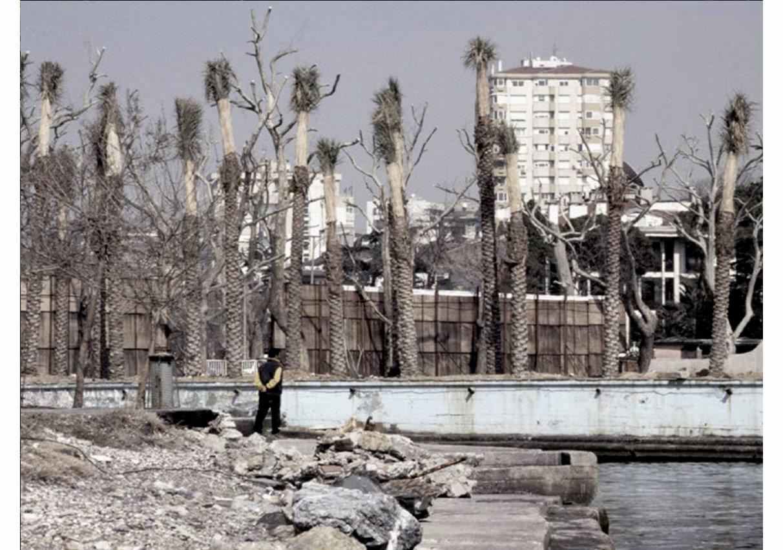 Grozny'de hiç palmiye ağacı var mıdır?,Banu Cennetoğlu,2005