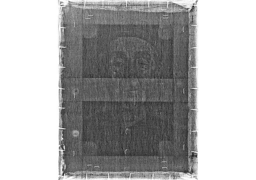 Kokona Despina x-ray 40x31cm
